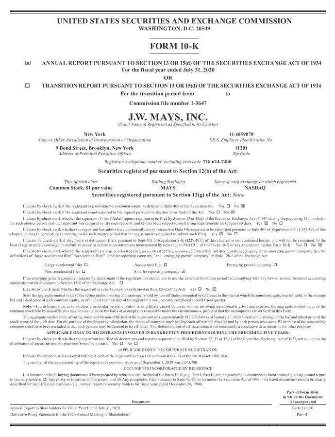 2020 Form 10-K page 1 (click to zoom in, CTRL + click to zoom out)